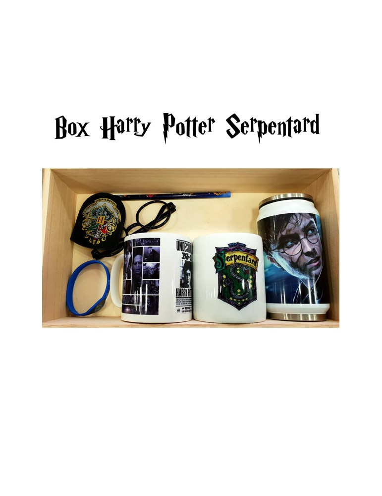 box harry potter serpentard